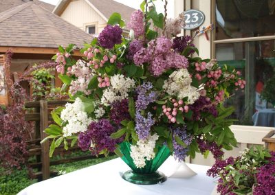 Winning Entry - A Touch of Lilac
